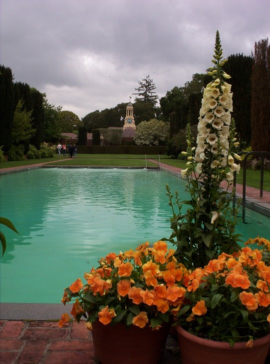 The pool for Filoli garden pool